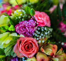 Senn Blumen AG | KMU Angebot Baselland, #corona