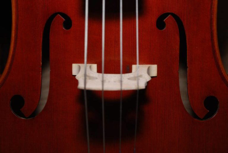 Ganter Streichinstrumente | KMU Angebot Baselland, #corona