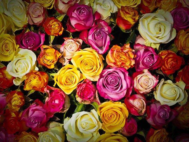 Fleurs Jean-Jacques | KMU Angebot Baselland, #corona